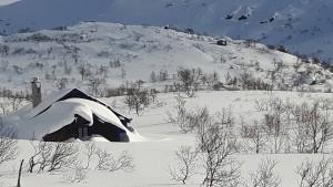 Stølen i snø